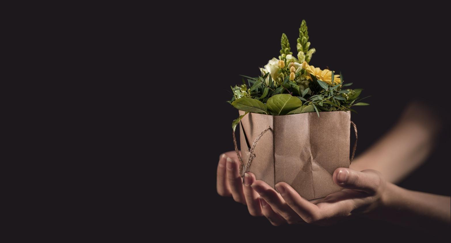 flowers-1338641_1920